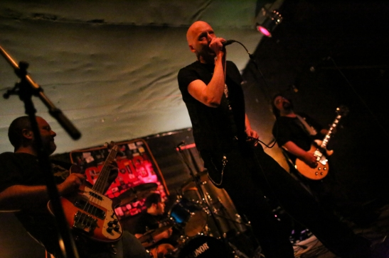 Twisted Roots' Pete Giordano performing last year with Pigboat.